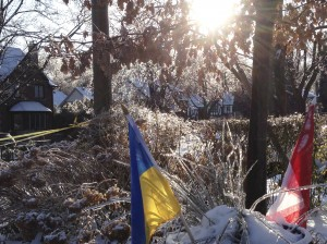 Our Ukrainian and Canadian flags in the ice and snow